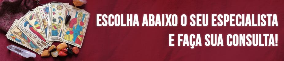 header página ESCOLHA SEU ESPECIALISTA